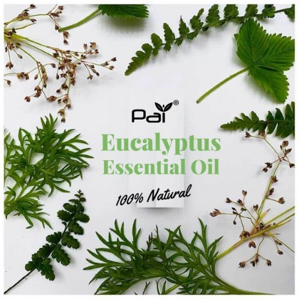 Pai Eucalyptus Pure Essential Oil 100% Natural Paraben Free Imported from Australia Essential oil 10ml