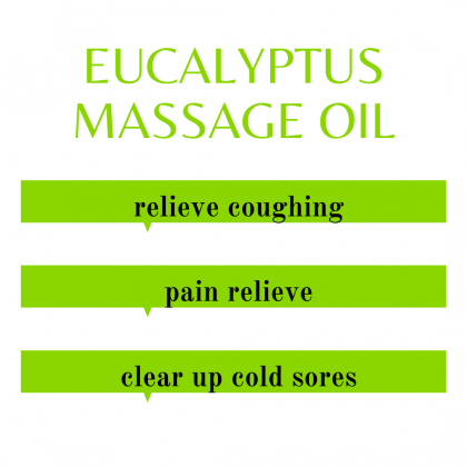 PAI Aromatherapy Eucalyptus Massage Oil for Face Hair Nail Body - 100% Natural Massage Oil Base Oil Essential Oil